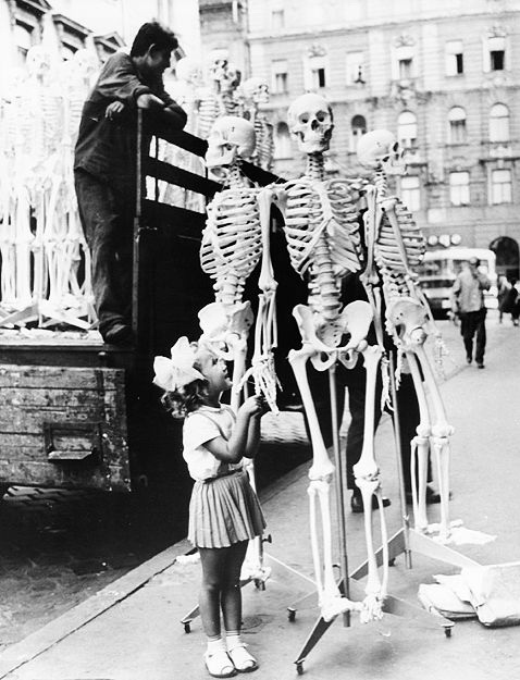 Little-girl-with-biology-class-skeletons-in-Hungary-1966.jpg