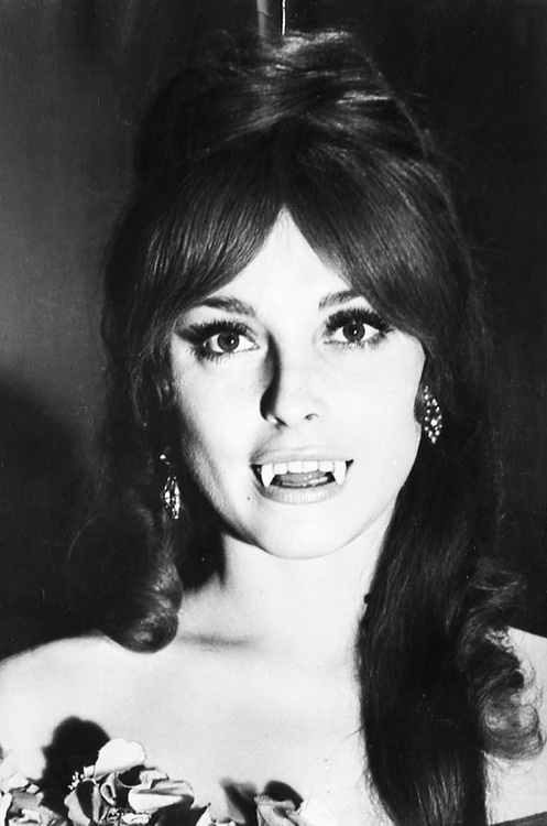 Sharon-Tate-Fearless-Vampire-Killers-1967.jpg